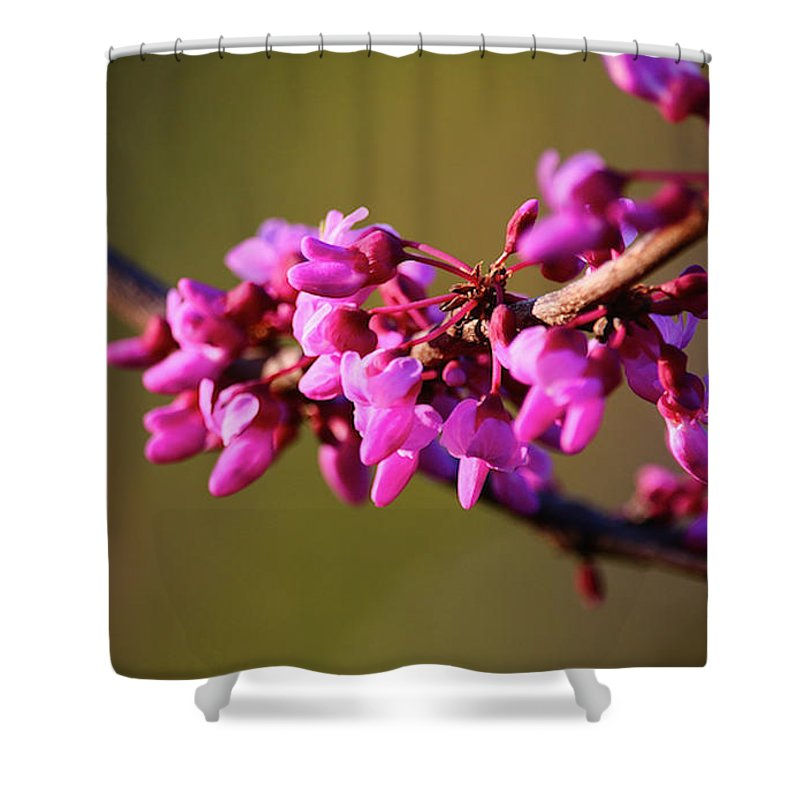 Flower Shower Curtain featuring the photograph Extending Welcome by Susan Herber