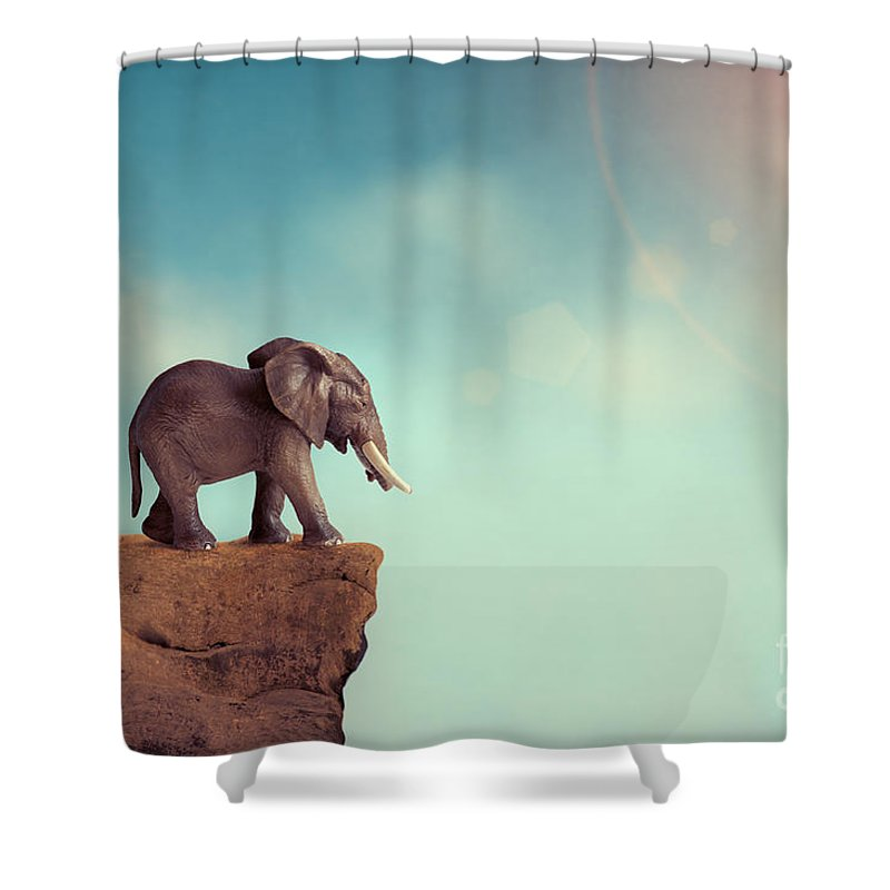 Elephant Shower Curtain featuring the photograph Extinction Concept Elephant Family On Edge Of Cliff by Lee Avison