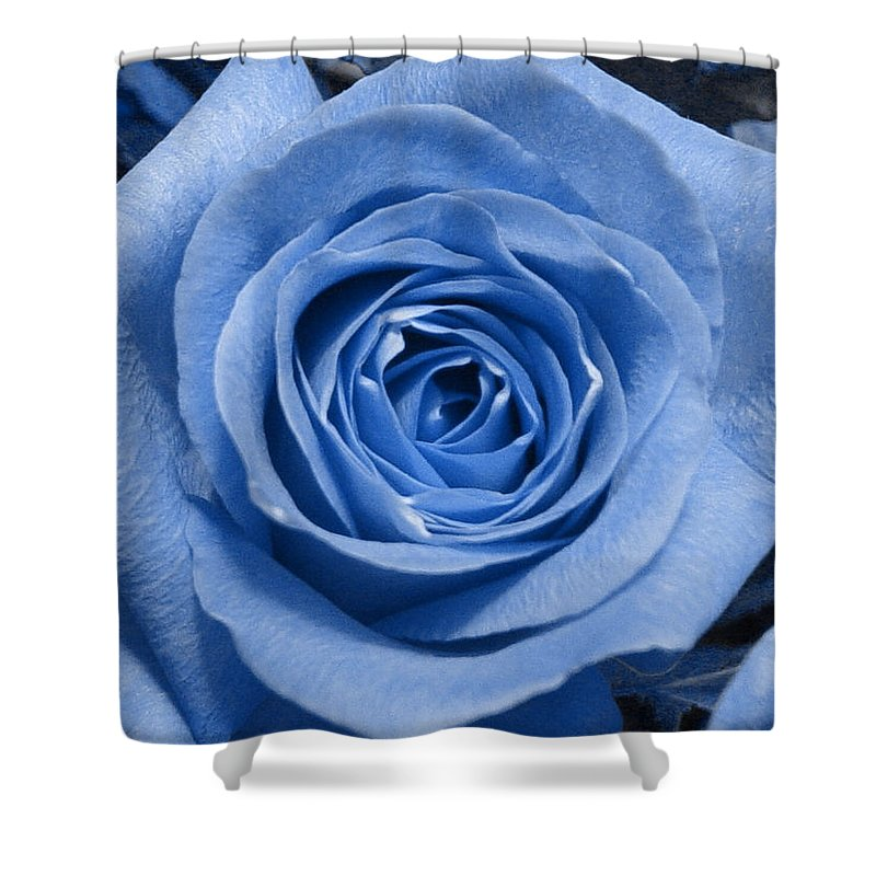 Rose Shower Curtain featuring the photograph Eye Wide Open by Shelley Jones