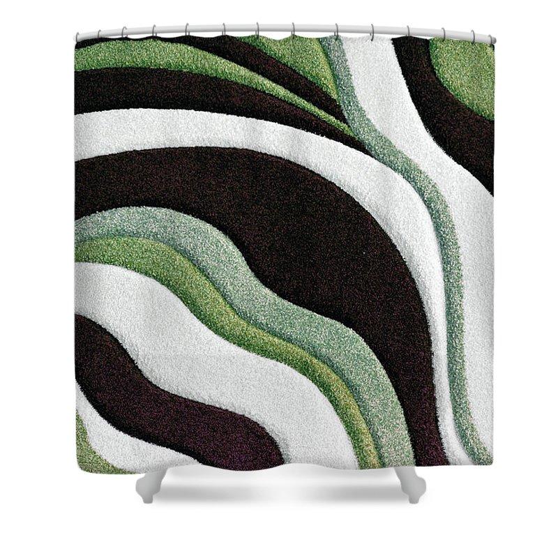 Martha Ann Shower Curtain featuring the painting F131716 by Mas Art Studio