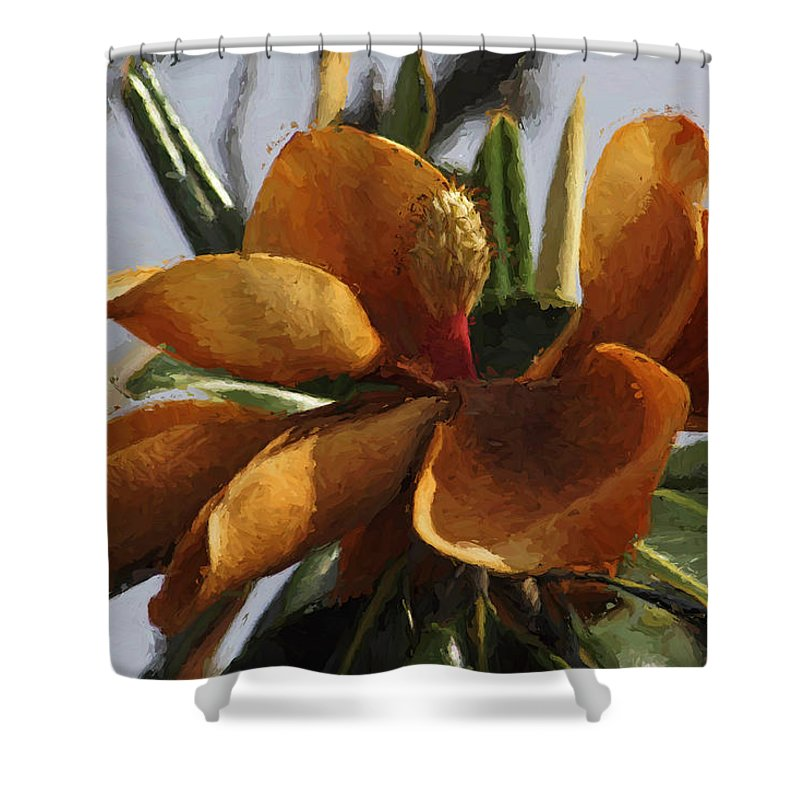Magnolia Shower Curtain featuring the photograph Faded Beauty - Flower - Magnolia by HH Photography of Florida