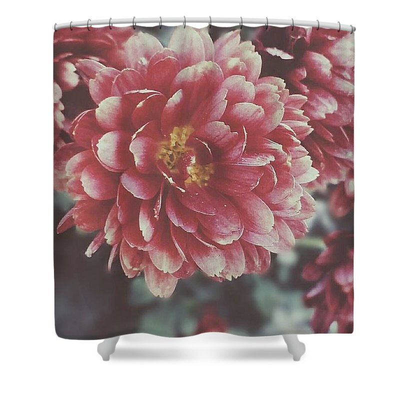Flower Shower Curtain featuring the photograph Faded Florals by Brittany Doyle