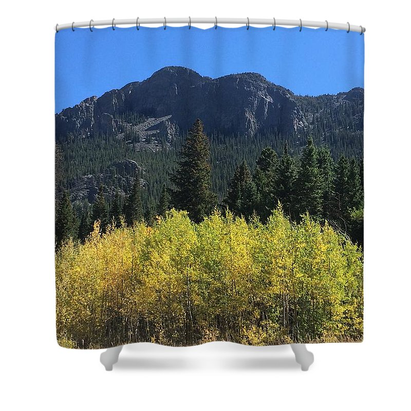 Aspen Shower Curtains