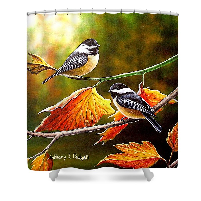 Chickadees Shower Curtain featuring the painting Fall Chickadees by Anthony J Padgett