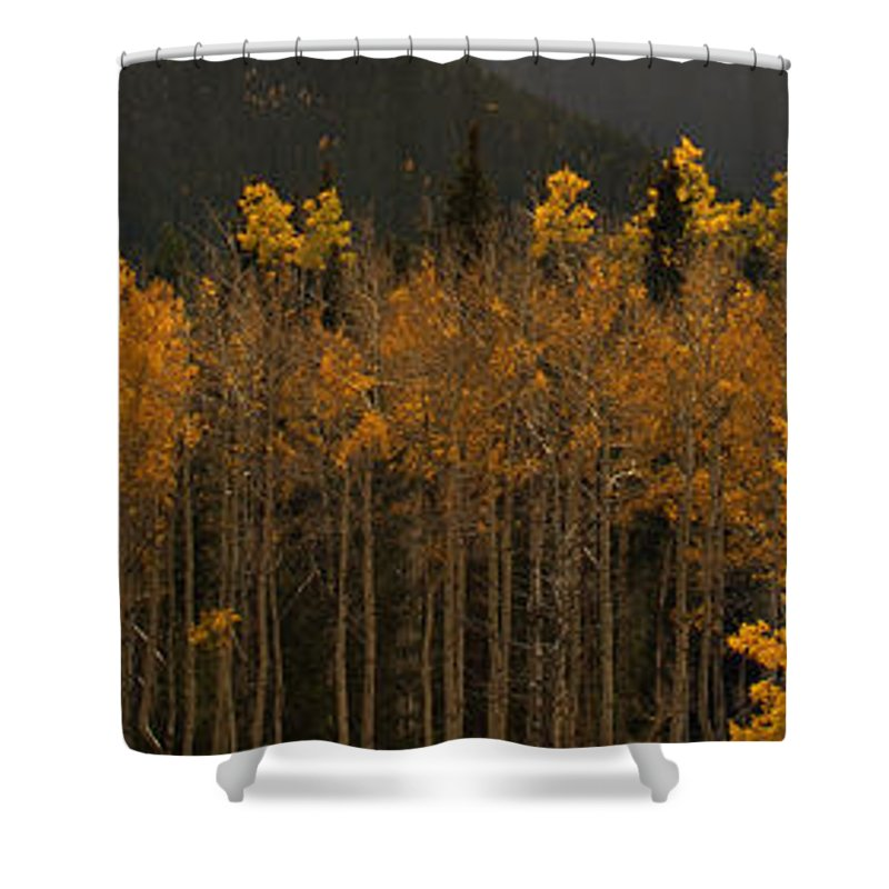 Fall Shower Curtain featuring the photograph Fall Colors by Kris McGehee
