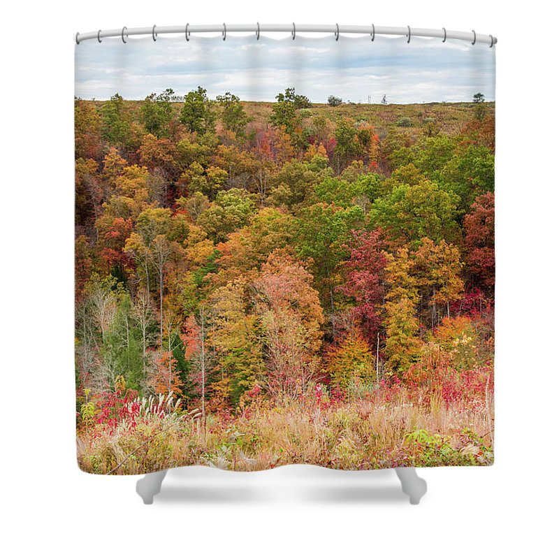 Fall Shower Curtain featuring the photograph Fall Colors On Hillside by Cris Ritchie