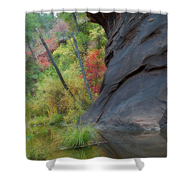 Landscape Shower Curtain featuring the photograph Fall Colors Peek Around Mountain Vertical by Heather Kirk