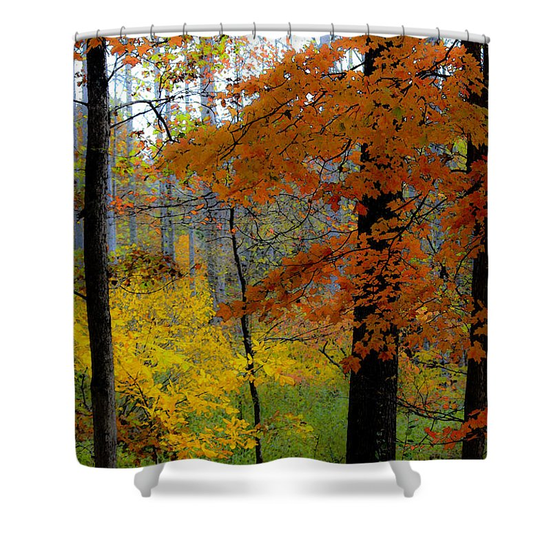 Fall Shower Curtain featuring the digital art Fall Colors Watercolor by Teresa Mucha
