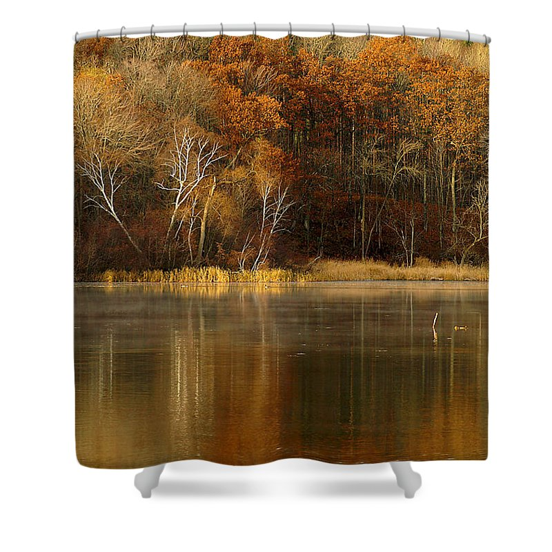 Lake Shower Curtain featuring the photograph Fall Cove by Thomas Young
