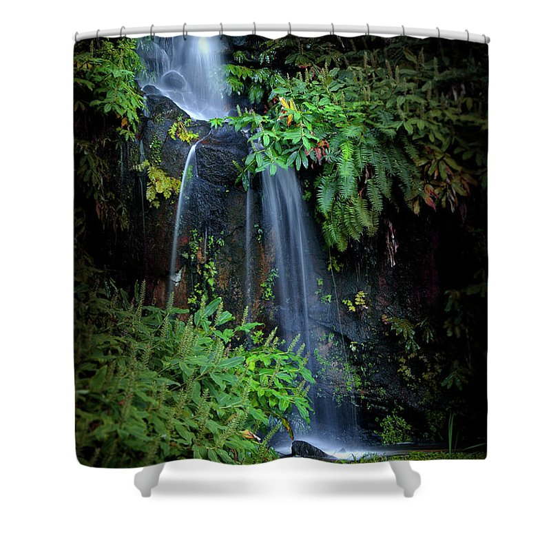 Autumn Shower Curtain featuring the photograph Fall In Eden by Carlos Caetano