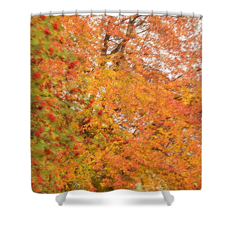 Leaves Shower Curtain featuring the photograph Fall by Laurie Kidd