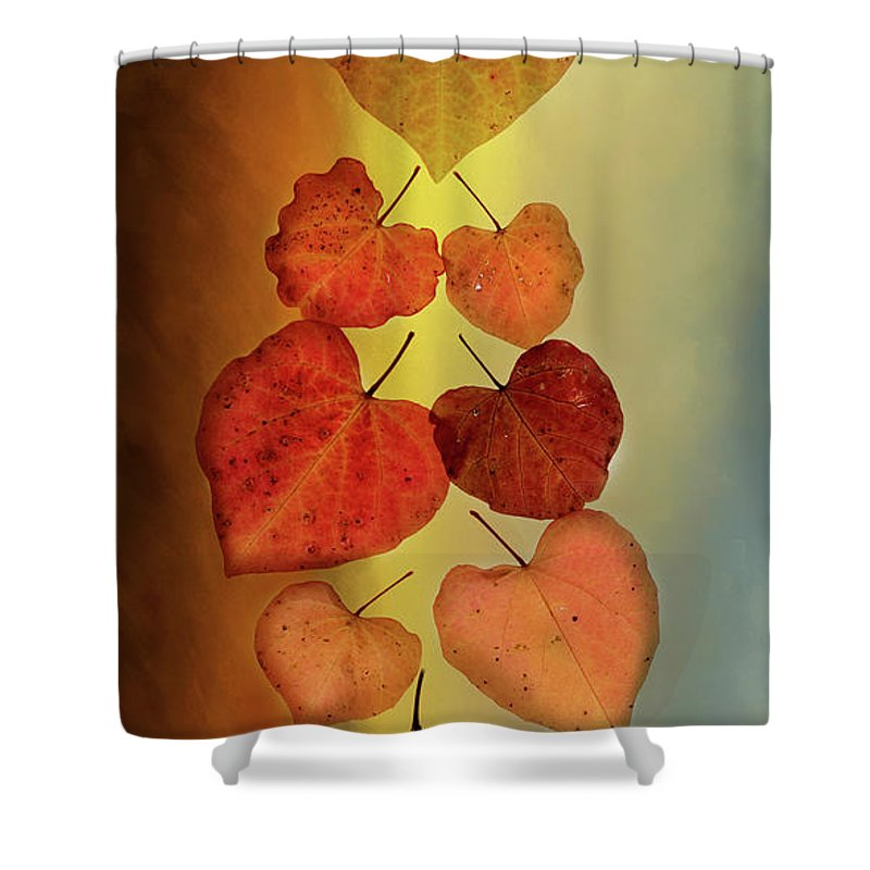 Fall Shower Curtain featuring the photograph Fall Leaves #2 by Rebecca Cozart