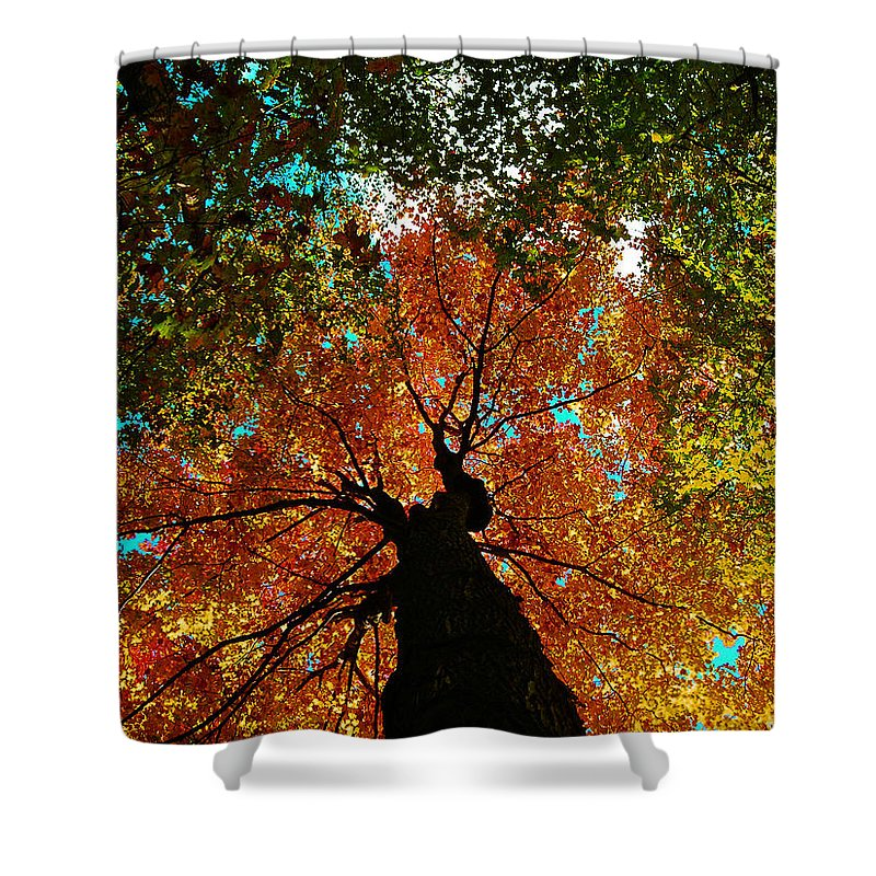 Season Shower Curtain featuring the photograph Fall Leaves by Juergen Weiss