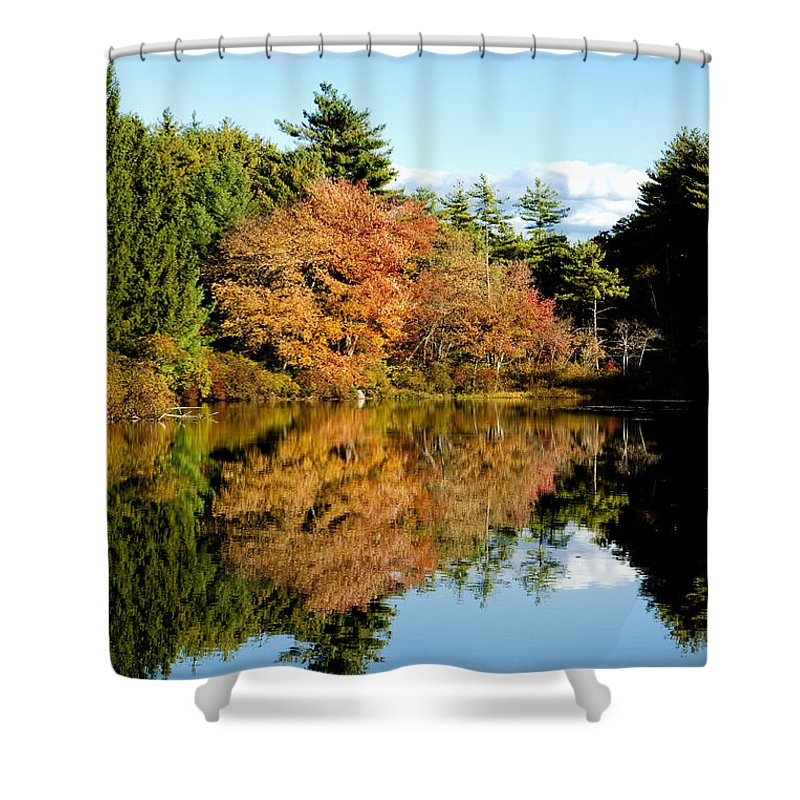 Foliage Shower Curtain featuring the photograph Fall Reflections by Greg Fortier