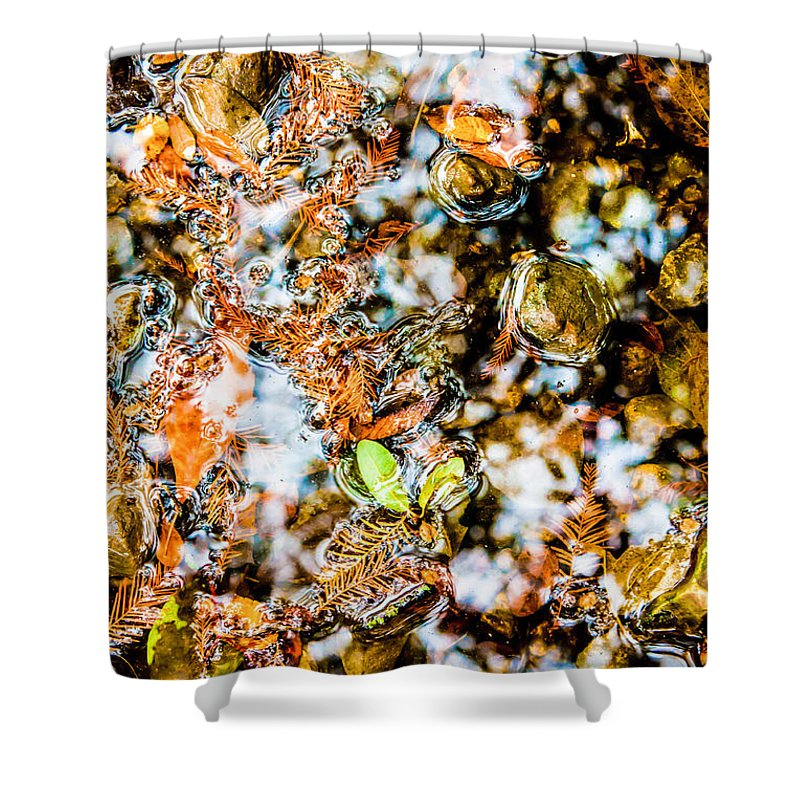 Autumn Shower Curtain featuring the photograph Fall Reflections by Rachel Sheelam