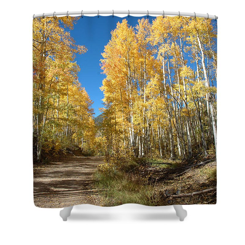 Landscape Shower Curtain featuring the photograph Fall Road by Jerry McElroy