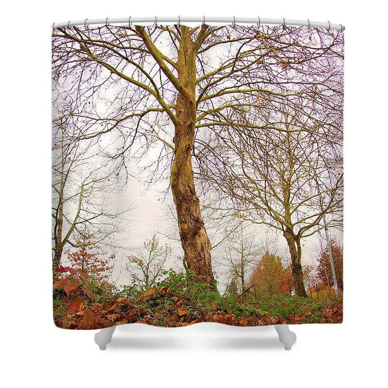 Fall Season Shower Curtain featuring the photograph Fall Season At Its Best by Seb Estrada