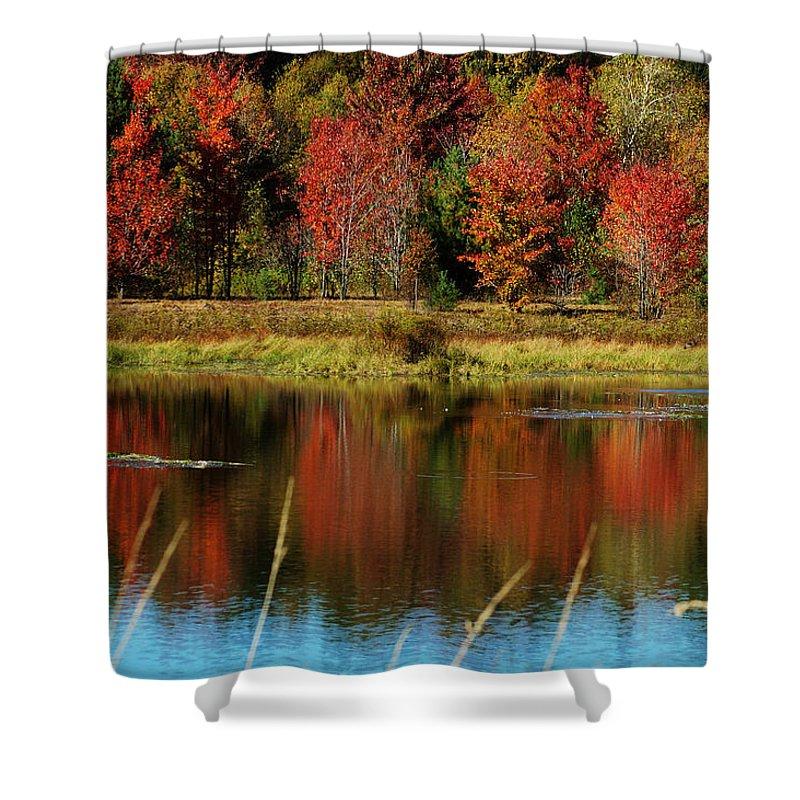 Autumn Shower Curtain featuring the photograph Fall Splendor by Linda Murphy