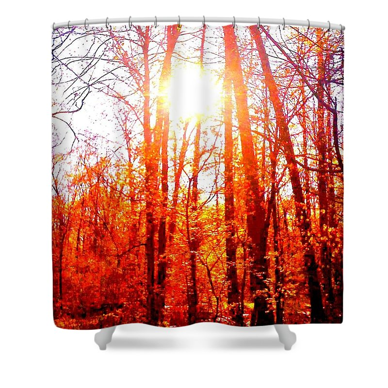 Fall Shower Curtain featuring the photograph Fall Stroll by Christine Paris