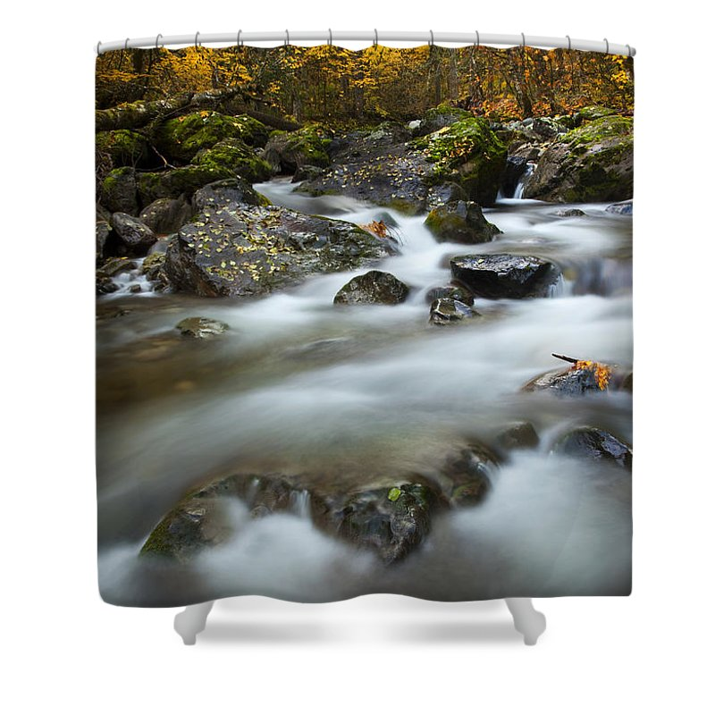 Stream Shower Curtain featuring the photograph Fall Surge by Mike Dawson