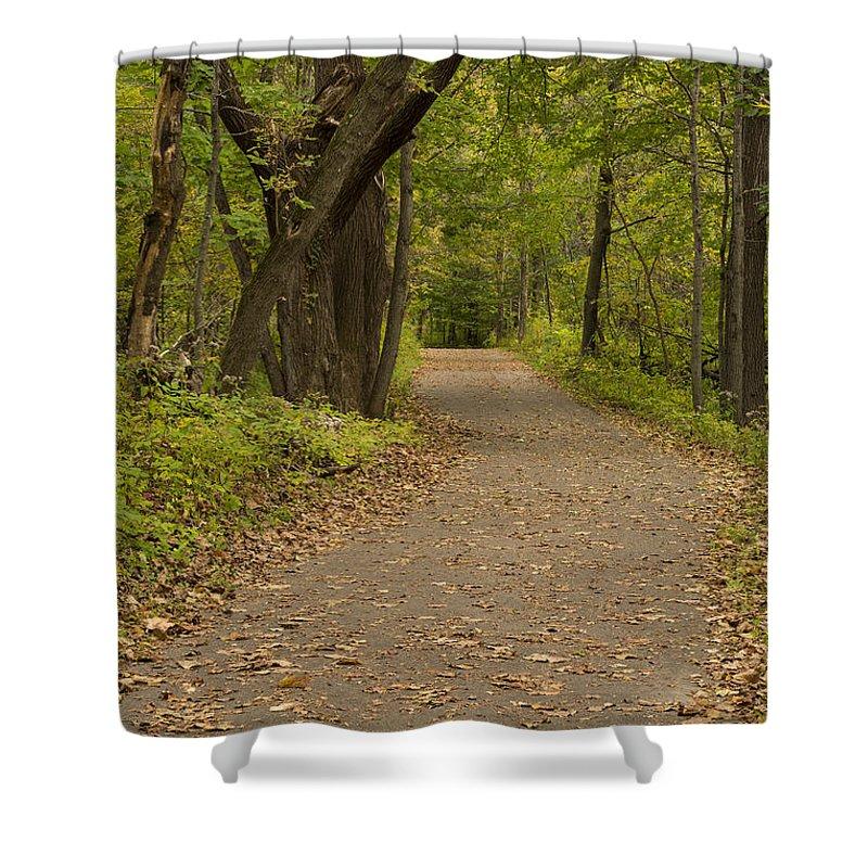 Trail Shower Curtain featuring the photograph Fall Trail Scene 45 A by John Brueske