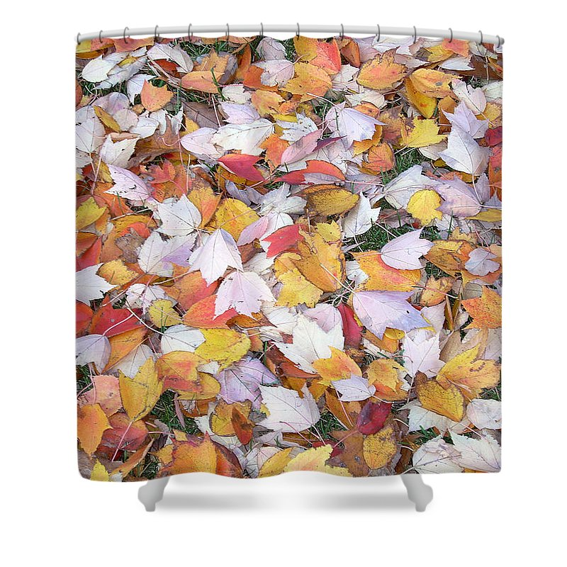 Photography Fall Autum Leaves Shower Curtain featuring the photograph Fallen Fantasy by Karin Dawn Kelshall- Best