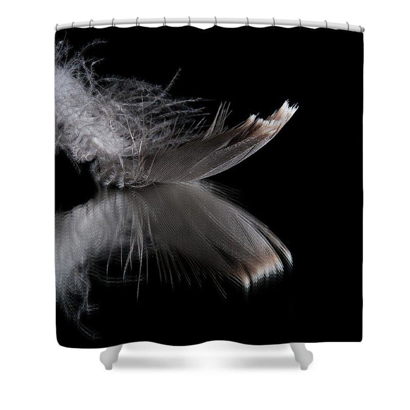 Macro Shower Curtain featuring the photograph Fallen Reflections 3 by Matt Hicks