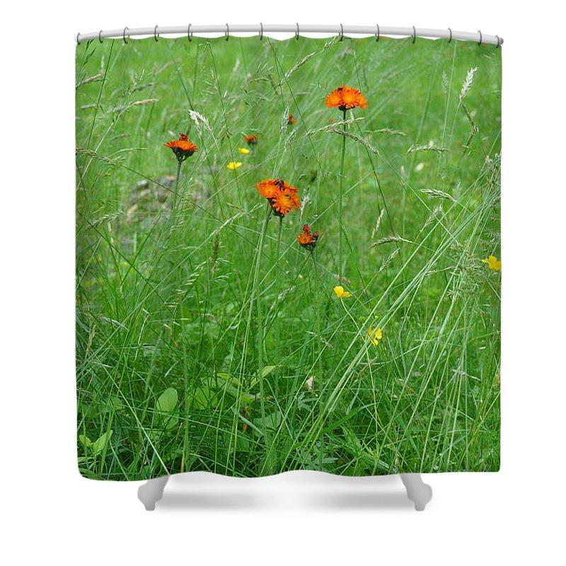 Flower Shower Curtain featuring the photograph Fallow Field by Rich Bodane