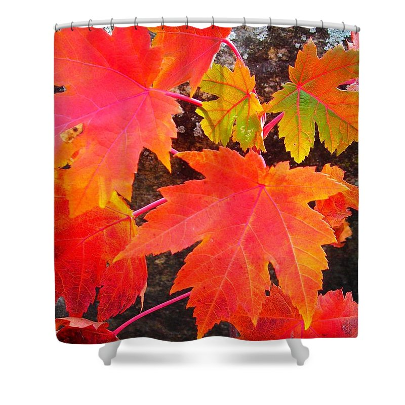North America Shower Curtain featuring the photograph Falltime ... by Juergen Weiss