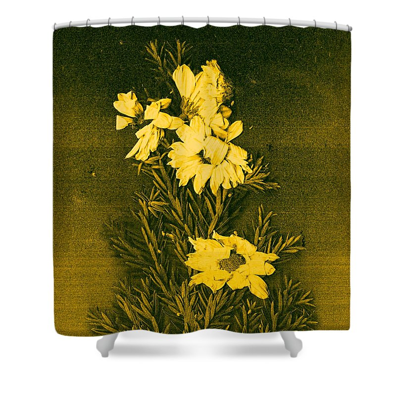 Flowers Shower Curtain featuring the mixed media Fantasy Tree by Pepita Selles