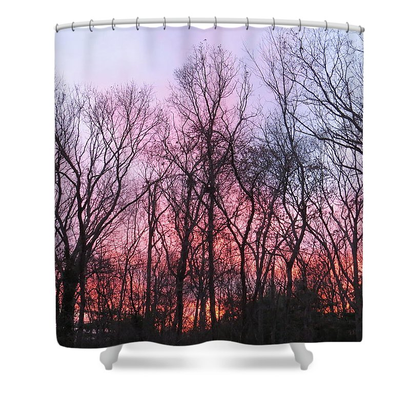 February At Twilight Shower Curtain featuring the photograph February At Twilight by Jean Costa