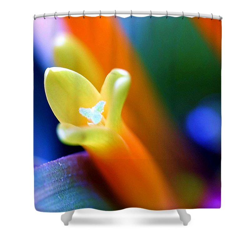 Flower Shower Curtain featuring the photograph Feelings by Mitch Cat
