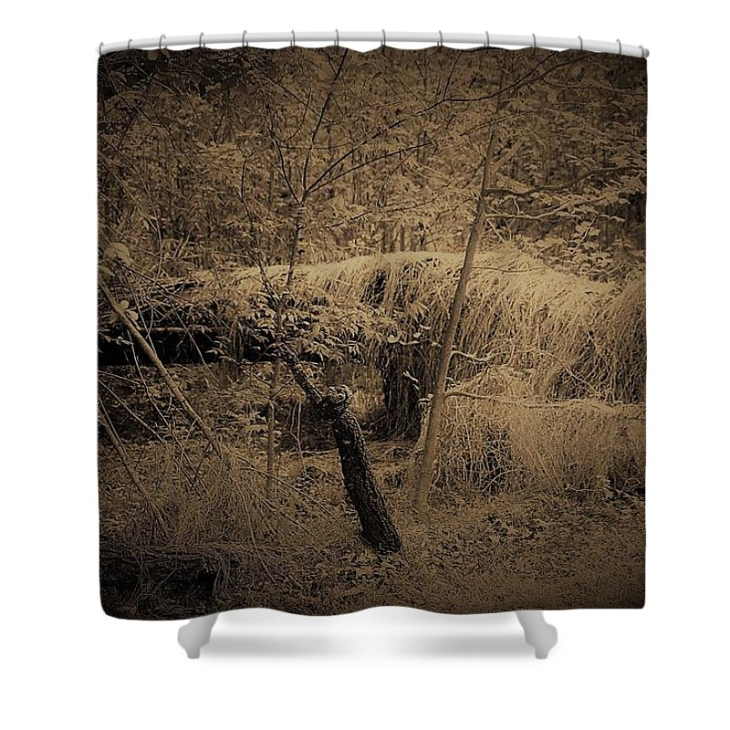 North Carolina Shower Curtain featuring the photograph Back To Earth by Vice Photo