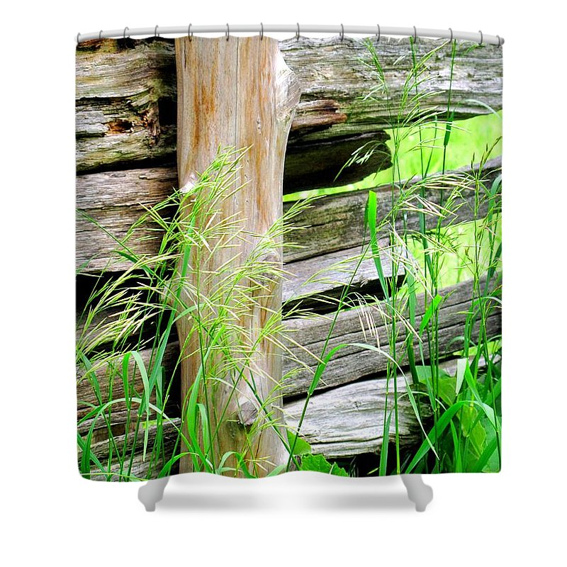 Fence Shower Curtain featuring the photograph Fence by Ian MacDonald
