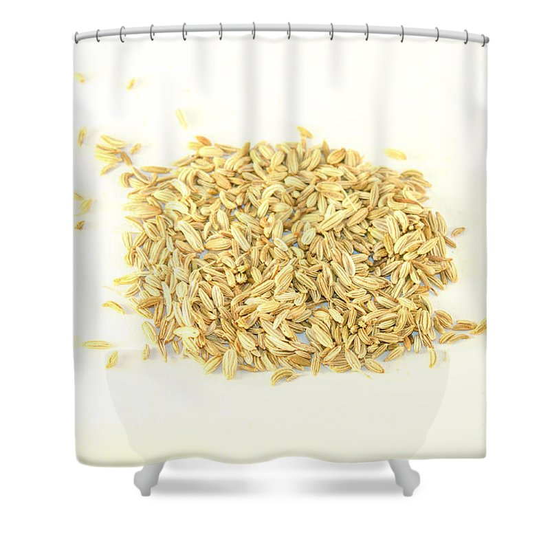 Fennel Shower Curtain featuring the photograph Fennel Seed by D R