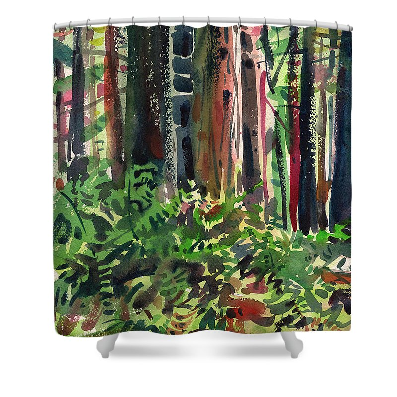 Ferns Shower Curtain featuring the painting Ferns And Redwoods by Donald Maier