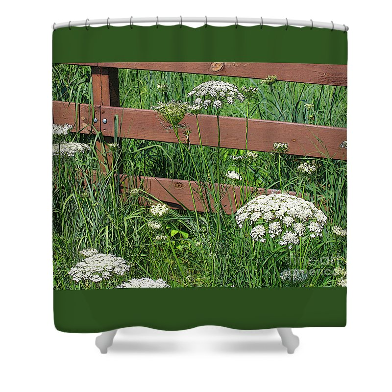 Flower Shower Curtain featuring the photograph Field Of Lace by Ann Horn