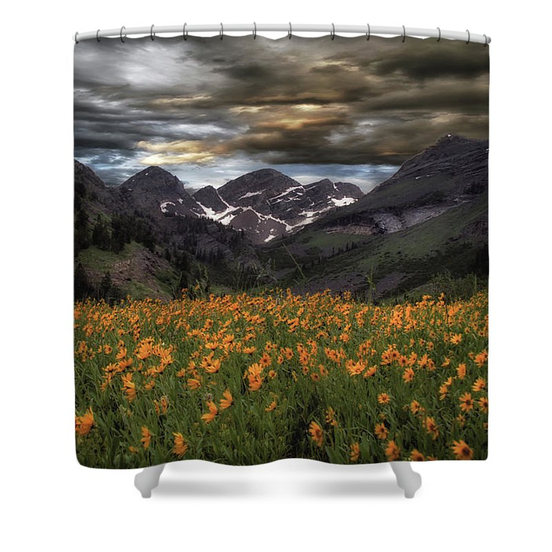 Usa Shower Curtain featuring the photograph Field Of Sunflowers by Mitch Johanson