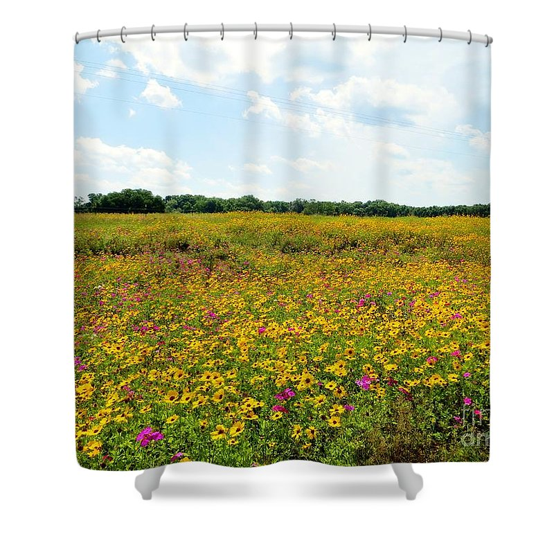 Field Of Wildflowers Shower Curtain featuring the pyrography Field Of Wildflowers by Tim Townsend