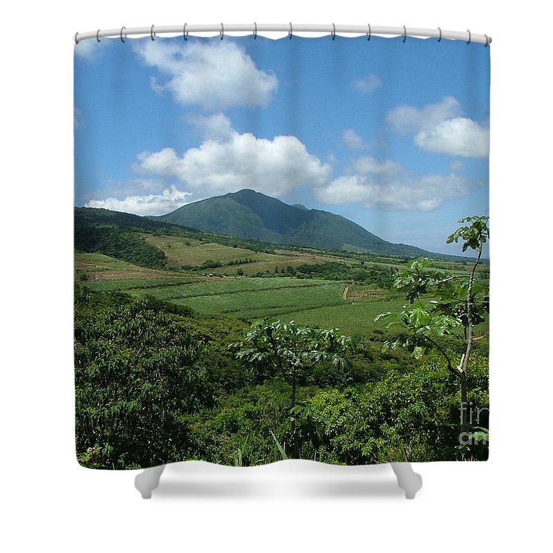 Surgar Cane Shower Curtain featuring the photograph St. Kitts Fields Of Cane by Neil Zimmerman