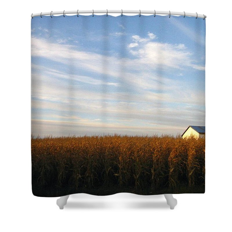 Country Shower Curtain featuring the photograph Fields Of Gold by Rhonda Barrett