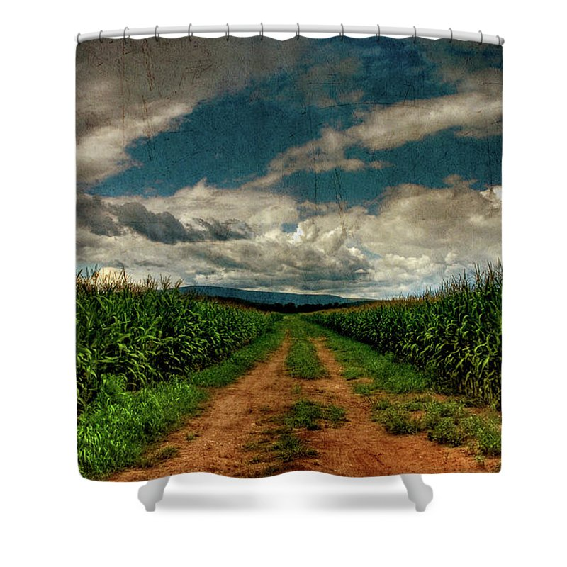 Summer Shower Curtain featuring the photograph Fields Of Summer by Lois Bryan