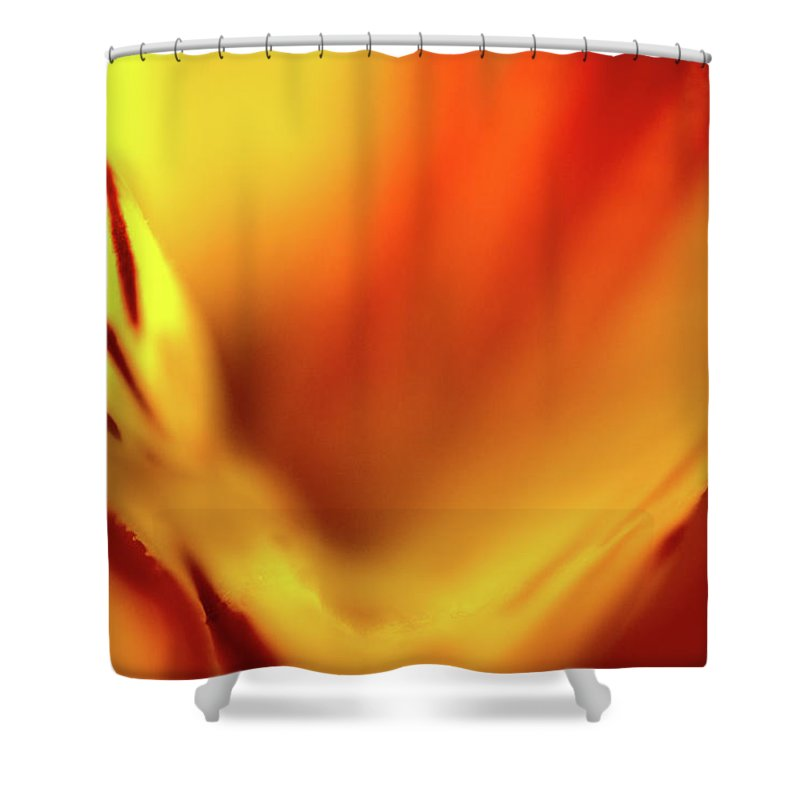 Abstract Shower Curtain featuring the photograph Fiery by Ilka B