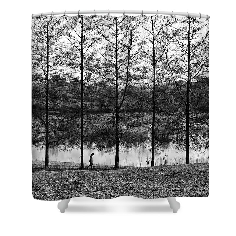 Landscape Shower Curtain featuring the photograph Fine Trees by George Cabig