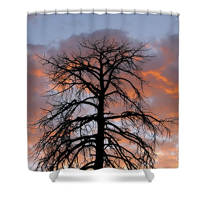 Fire Shower Curtain featuring the photograph Fire In The Sky by David Lee Thompson