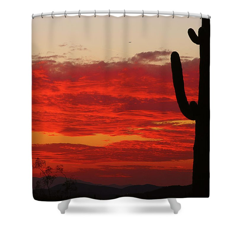 Sunset Shower Curtain featuring the photograph Fire In The Sky by James BO Insogna