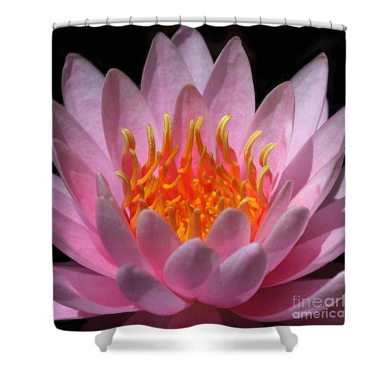 Water Lily Shower Curtain featuring the photograph Fire Within by Sabrina L Ryan