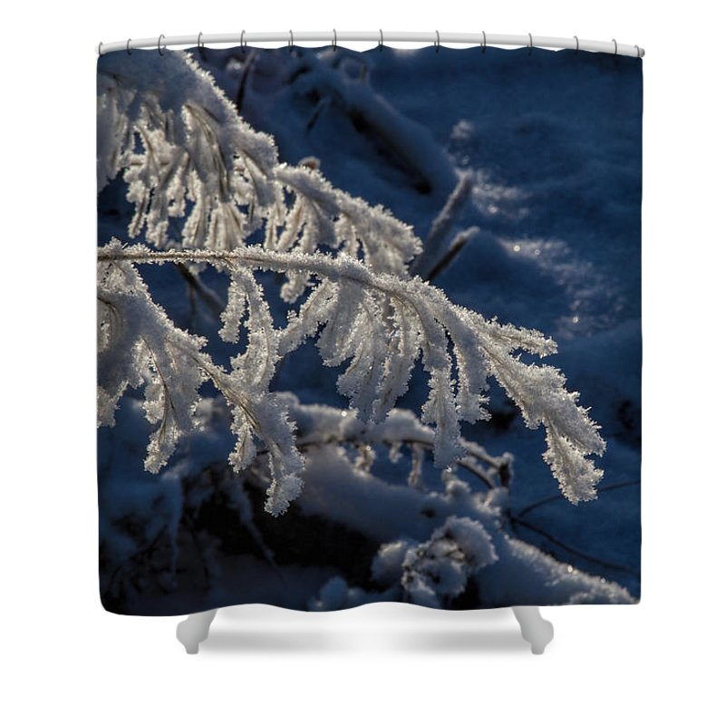 Frost Shower Curtain featuring the photograph First Light by Alana Thrower