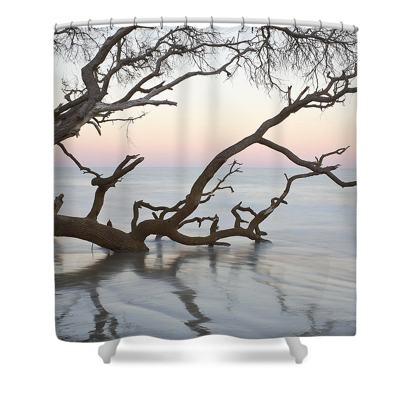 Sunrise Shower Curtain featuring the photograph First Light - Hunting Island South Carolina by Bill Swindaman