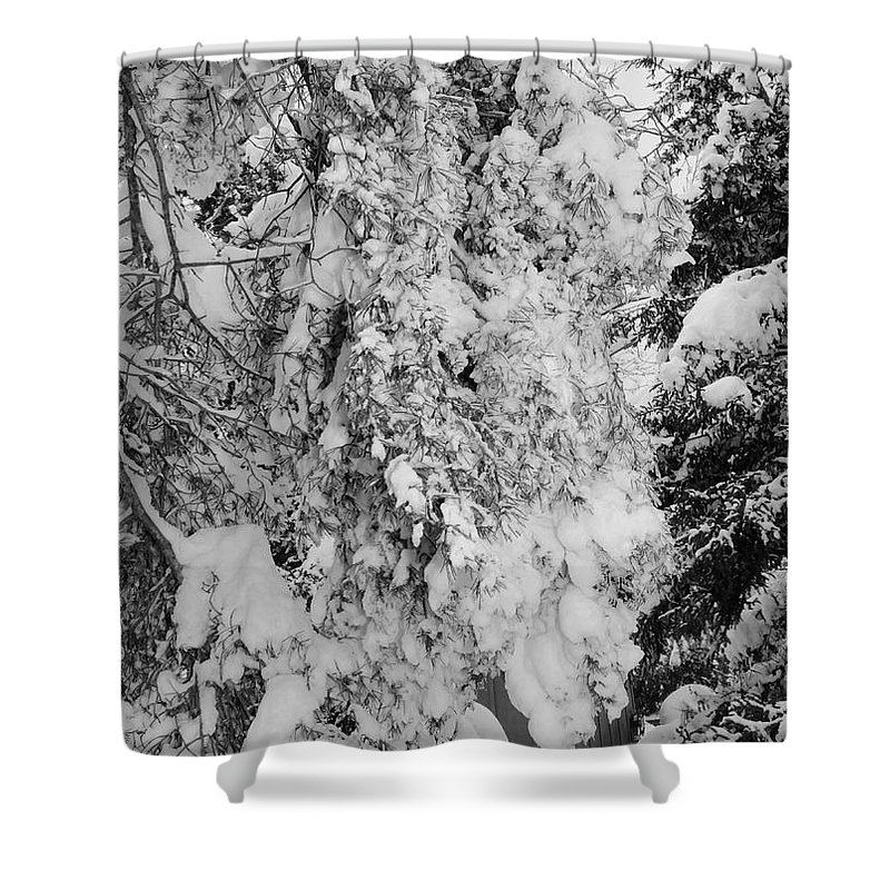 Snow Shower Curtain featuring the photograph First Snowfall by Kathleen Struckle